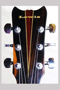 BILL LEWIS GUITAR