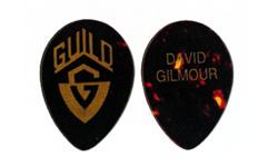guild 354